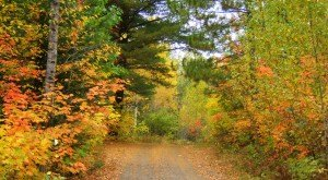 10 Undeniable Signs That Fall Is Almost Here In Minnesota