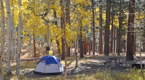Any Explorer Should Visit These 8 Phenomenal Camping Spots In Arizona