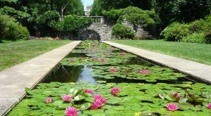 Here Are The 12 Most Beautiful Gardens You'll Ever See In New Jersey