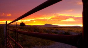 Here are 12 Stunning Sunsets in Utah That Would Blow Anyone Away
