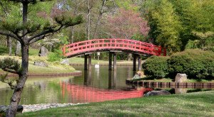 Here Are The 5 Most Beautiful Gardens You'll Ever See In Tennessee