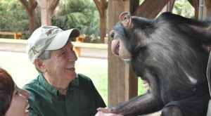 8 Little Known Places In South Carolina Where Animal Lovers Should Go