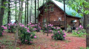 These Awesome Cabins In West Virginia Will Give You An Unforgettable Stay