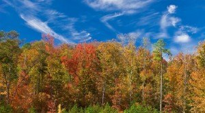 15 Reasons Why Fall Is The Best Time Of The Year In Alabama