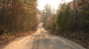 Take These 10 MORE Country Roads In Georgia For An Unforgettable Scenic Drive
