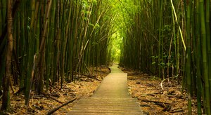 30 Places In Hawaii You Must See Before You Die