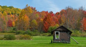10 Reasons Why Fall Is The Best Time Of The Year In Pennsylvania