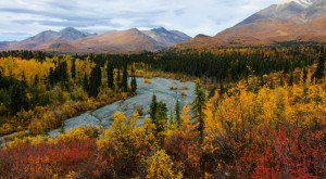 The Fall Foliage At These 9 Parks In Alaska Is Stunningly Beautiful