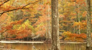You Must Visit These 10 Awesome Places In Mississippi This Fall