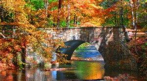 The Fall Foliage At These 14 State Parks In Virginia Is Stunningly Beautiful