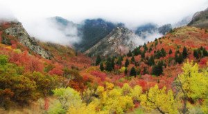 12 Reasons Why Fall is the Best Season in Utah