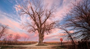 Take These 10 Country Roads In Iowa For An Unforgettable Scenic Drive