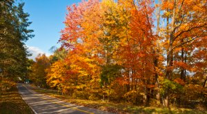 Take These 12 Country Roads In New Jersey For A Lovely Scenic Drive