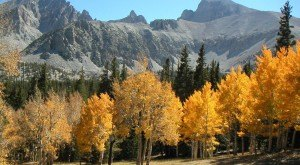 The Fall Foliage At These 7 State Parks In Nevada Is Stunningly Beautiful