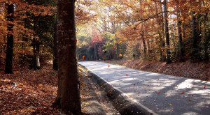Take These 19 Country Roads In Virginia For An Unforgettable Scenic Drive