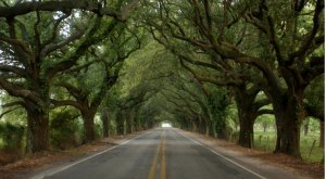 9 Scenic Drives That Will Make You Fall In Love With Louisiana
