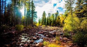 What These 20 Utah Photographers Captured Will Blow You Away