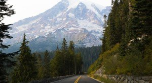 Take These 10 Scenic Roads In Washington For An Unforgettable Drive