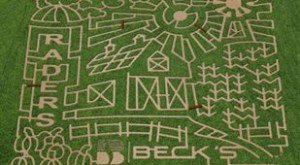 Get Lost In These 9 Awesome Corn Mazes In Illinois This Fall