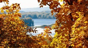 The Fall Foliage At These 8 State Parks In Illinois Is Stunningly Beautiful
