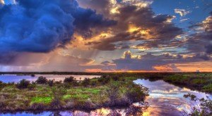 What These 16 Florida Photographers Captured Will Blow You Away – Part 2