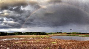 Amazing! These 16 Rainbows Captured In Indiana Will Leave You Speechless