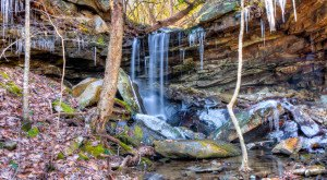 You'll Be Blown Away By These 10 Amazing State Forests In Tennessee
