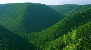 You'll Be Blown Away By These 10 Amazing State Forests In Pennsylvania