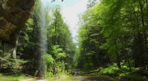 You'll Be Blown Away By These 10 Amazing State Forests In Ohio