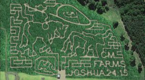 6 Amazing Corn Mazes To Check Out In Louisiana This Fall