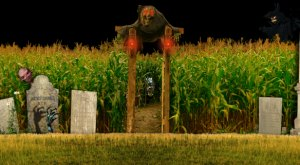 9 Awesome Corn Mazes in Vermont You Have To Try This Fall