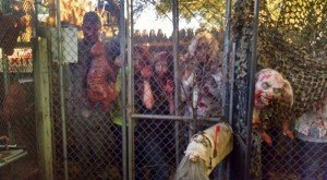 These 10 Haunted Houses In Iowa Will Terrify You In The Best Way