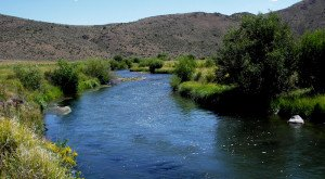 There's Something Incredible About These 10 Rivers In Nevada