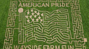 10 Awesome Corn Mazes In Virginia You Have To Do This Fall