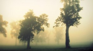 12 Eerie Shots In Kentucky That Are Spine-Tingling Yet Magical