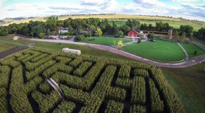 10 Awesome Corn Mazes In Colorado You Have To Do This Fall