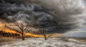 What These 15 South Carolinian Photographers Captured Will Blow You Away – Part 4