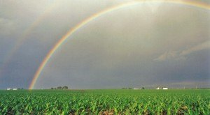 Amazing! These 9 Rainbows Captured In Illinois Will Leave You Speechless