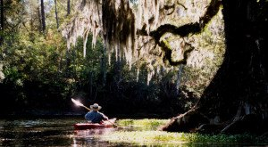 There's Something Incredible About These 16 Rivers In Florida