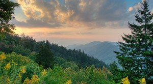 Most People Don't Know These 10 Treasures Are Hiding In Tennessee