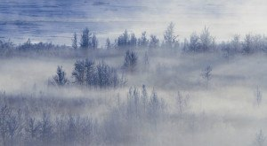 9 Eerie Shots In Alaska That Are Spine-Tingling Yet Magical