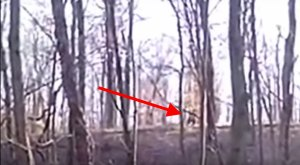 Some People In Indiana Consider This Undeniable Proof Bigfoot Exists