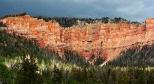 You'll Be Blown Away By These 8 Amazing National Forests in Utah