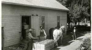 There's Something Special About These 17 Colorado Farms From The Past
