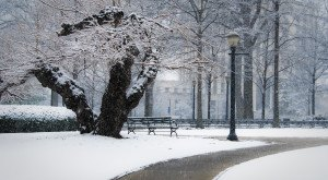 13 Times Snow Transformed Alabama Into The Most Beautiful Scenery