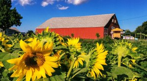 Here Are 10 Of The Most Charming Small Towns In Massachusetts