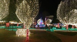 10 Places In Arkansas With The Most Amazing Christmas Decorations