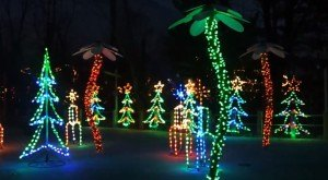 Did You Know The Indianapolis Zoo Offers One of The Best Zoo Lights in the USA?