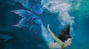 These 18 Magical Photos Of Florida's Live Mermaid City Will Leave You Speechless