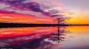 10 More Times The Sun Transformed North Carolina Into The Most Gorgeous Scenery